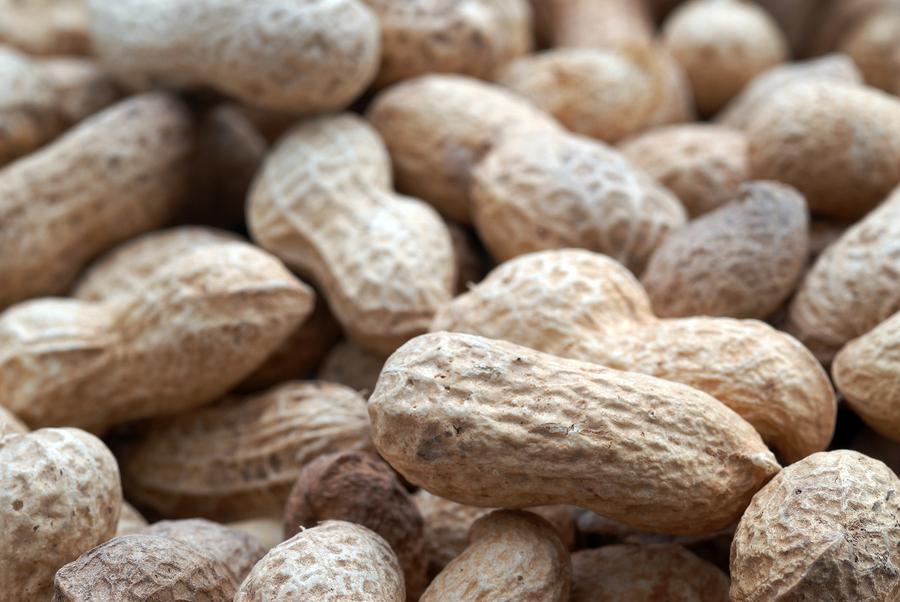 Food Allergies: Growing in Numbers and Understanding